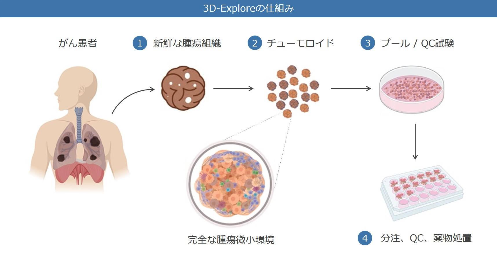 3D-Explore Overview