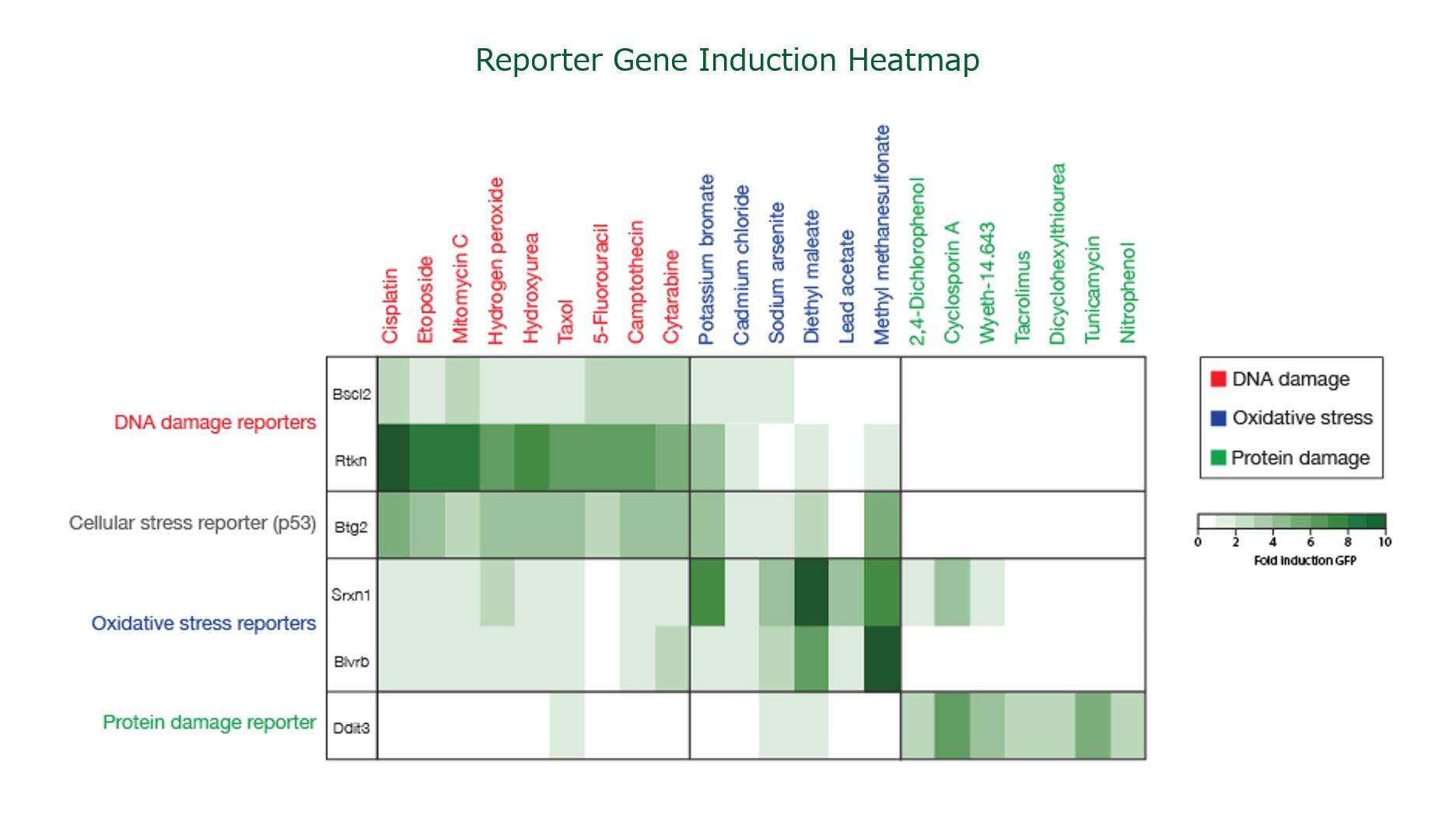 ToxTracker_Heatmap.