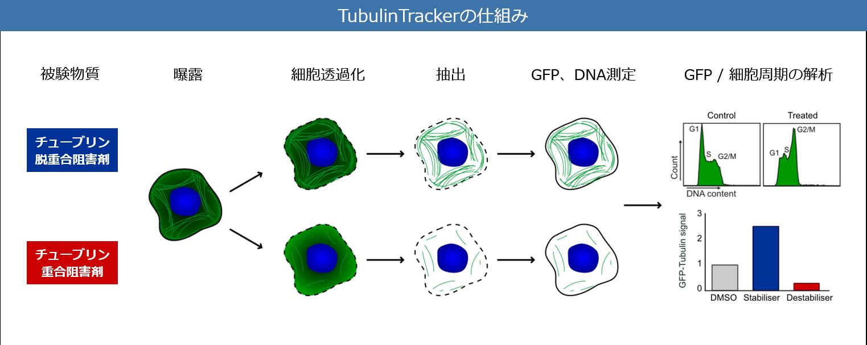 TubulinTracker-technology