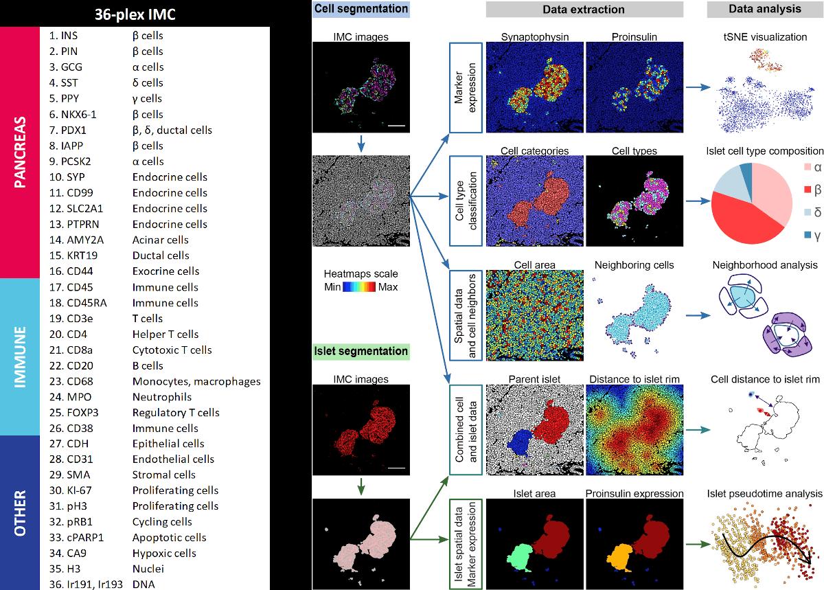 IMC Sample Data